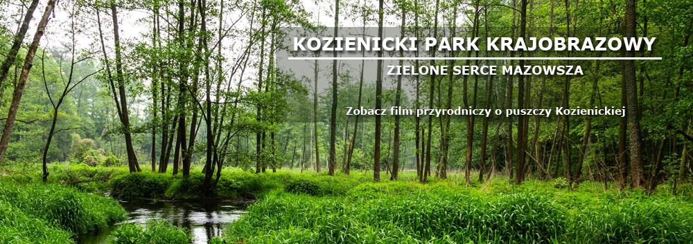 Kozienicki Park Krajobrazowy Zielone serce Mazowsza